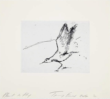 About To Fly - Tracey Emin