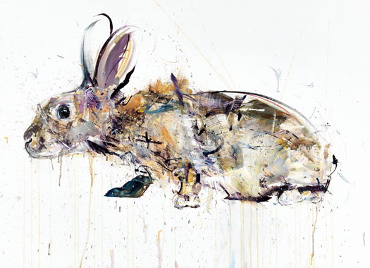 Rabbit II - Dave White