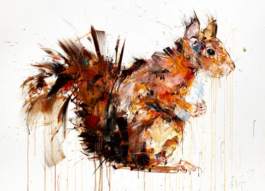 XL Red Squirrel - Dave White