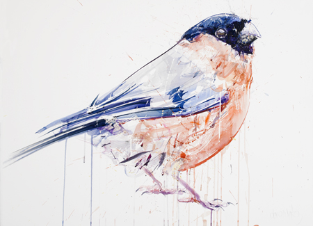 Bullfinch - Dave White