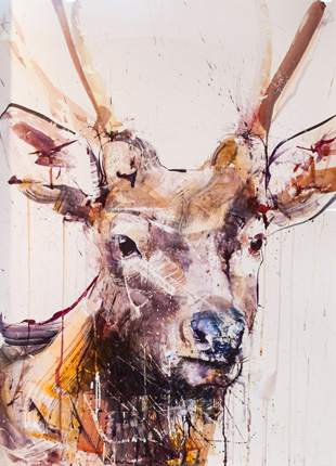 Stag II - Dave White