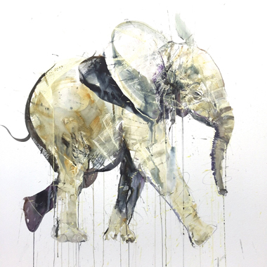 Young Elephant II - Dave White