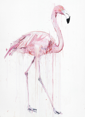 Flamingo I - Dave White