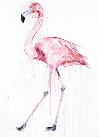 Flamingo II - Dave White