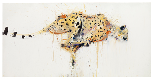 Cheetah - Dave White