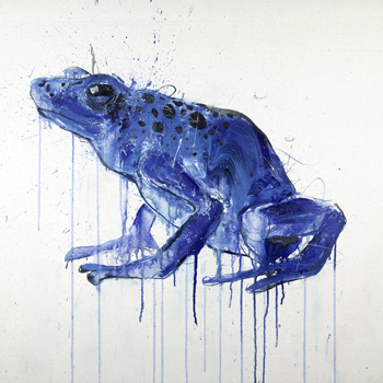 Tree Frog II - Dave White