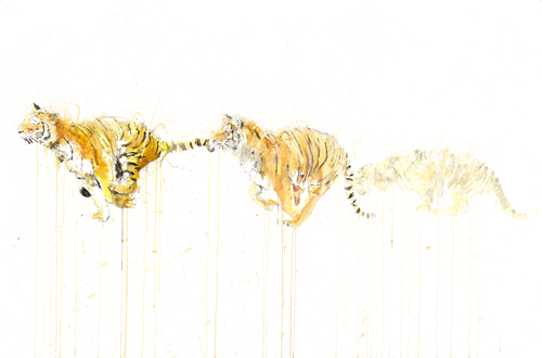 Tiger Movement - Dave White