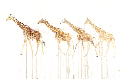 Giraffe Movement - Dave White