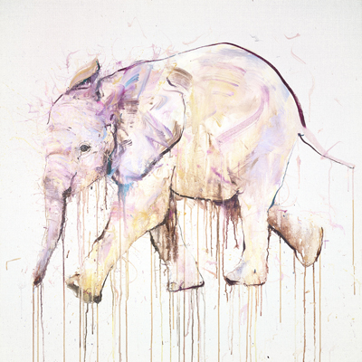Young Elephant XI - Dave White