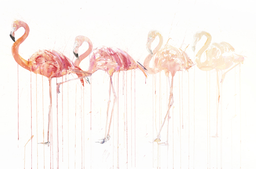 Flamingo Movement - Dave White