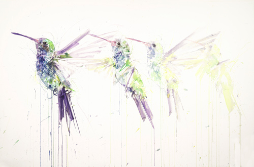 Hummingbird Movement - Dave White