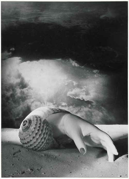 Dora Maar Untitled Hand Shell